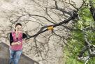 Nůžky zahradní univerzální jednočepelové FISKARS 1000597