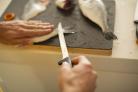 Nůž filetovací 21 cm FISKARS Functional Form 1014200