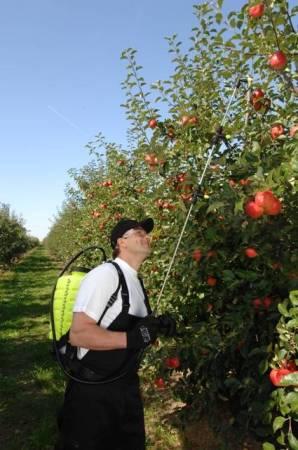 Zádový postřikovač MAROLEX Titan 20l slouží k ochraně rostlin a dezinfekčním pracím